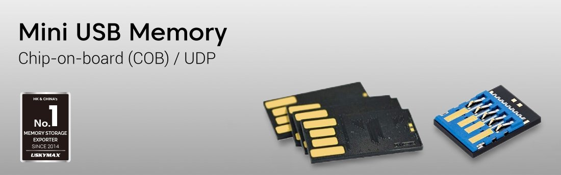 COB Memory Chip Manufacturer
